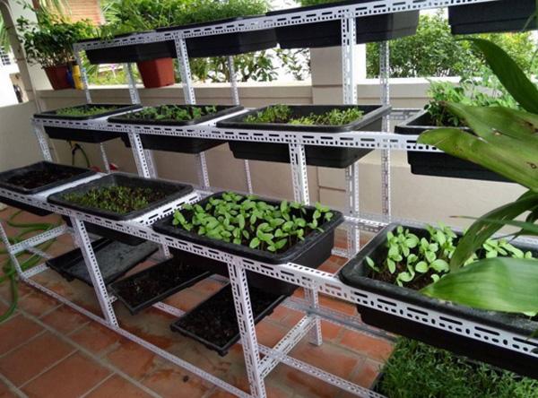 Hướng dẫn 3 bước tự thiết kế vườn trồng rau sạch tại nhà bằng kệ sắt v lỗ